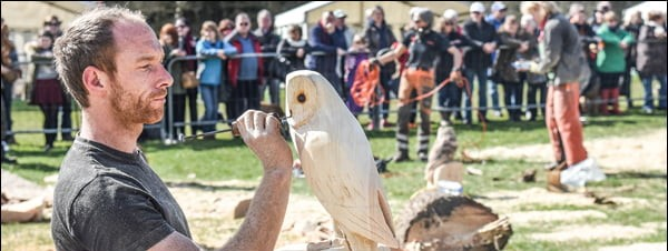 Thame food and country fair - photo of a wood carver
